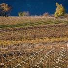 Fabio Maione: Dintorni di San Michele All'Adige