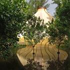 Jardin des Hesperides di Cao Perrot